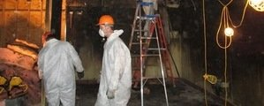 Water Damage Technician Working In Mold Infested Basement